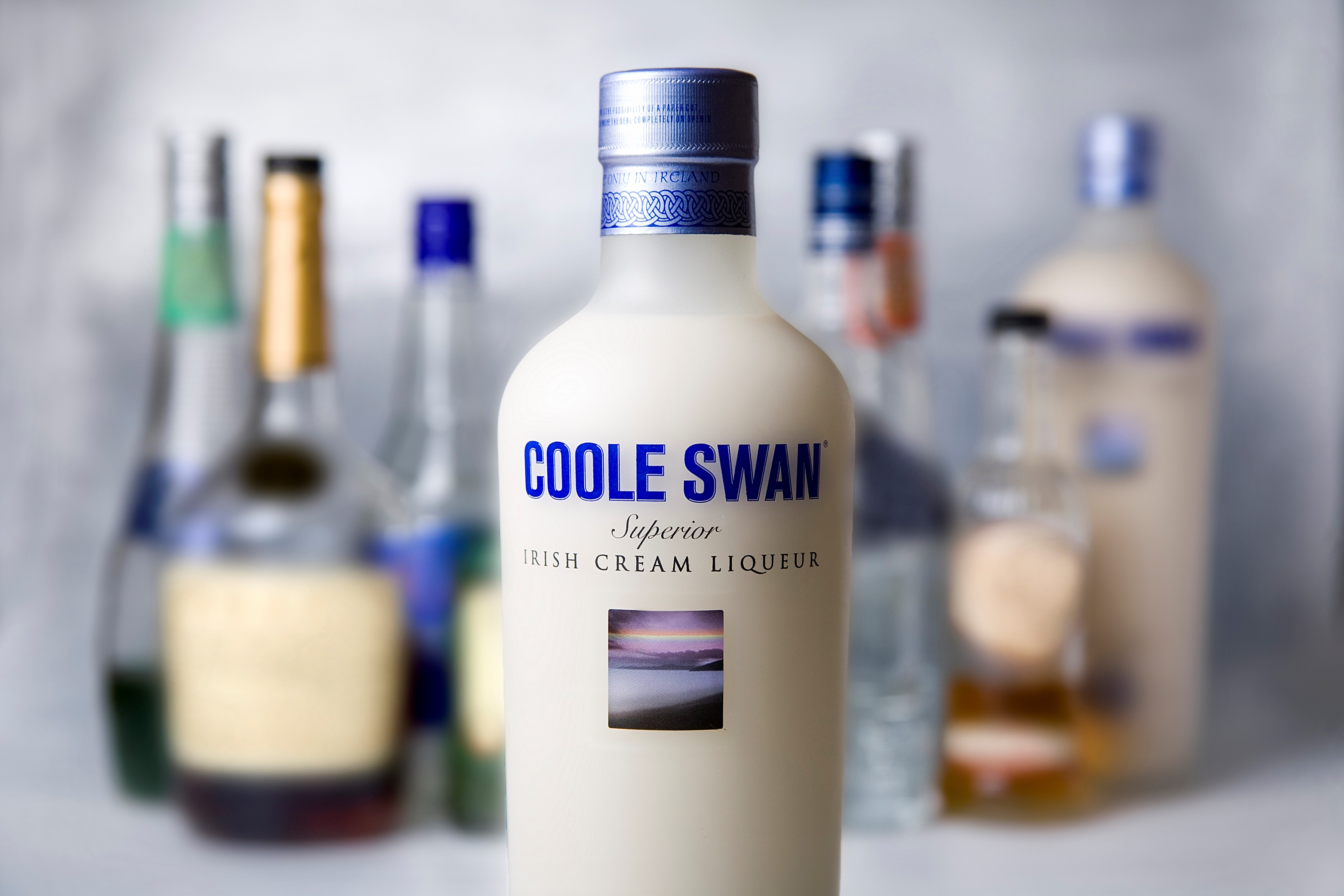 Coole Swan